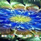 Download live wallpaper Neon flowers by Phoenix Live Wallpapers for free and Fire tornado for Android phones and tablets .