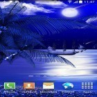 Download live wallpaper Night beach for free and Cars clock for Android phones and tablets .