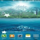 Download live wallpaper Ocean by Maxi Live Wallpapers for free and Purple hearts for Android phones and tablets .