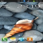 Download live wallpaper Seashell by Memory lane for free and Home tree for Android phones and tablets .