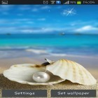 Download live wallpaper Seashells for free and Tree with falling leaves for Android phones and tablets .