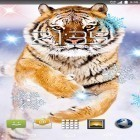 Download live wallpaper Snow tiger for free and Sky birds for Android phones and tablets .