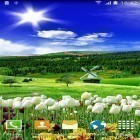 Download live wallpaper Spring nature for free and Car and model for Android phones and tablets .