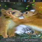Download live wallpaper Winter squirrel for free and Cute cat by Psii for Android phones and tablets .