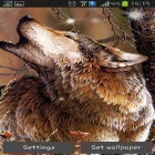 Download live wallpaper Wolf by HQ Awesome live wallpaper for free and Cute cat by Live Wallpapers 3D for Android phones and tablets .